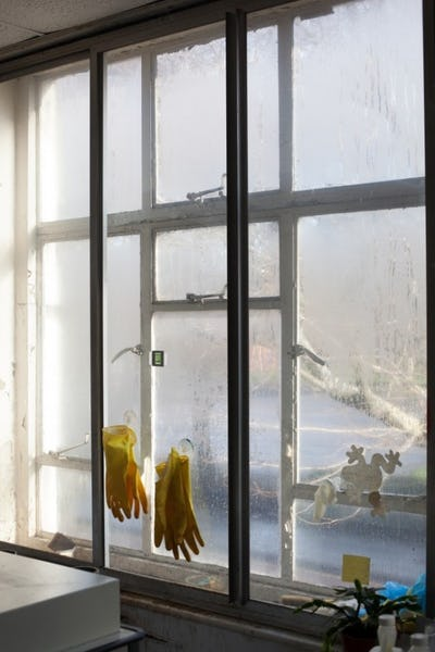 Image by Wolfgang Tillmans, Wet Room, Gloves, 2010. Image by Wolfgang Tillmans Courtesy David Zwirner, New York, Galerie Buchholz, Berlin/Cologne, Maureen Paley, London