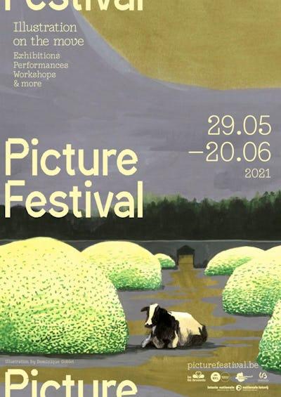 Picture Festival