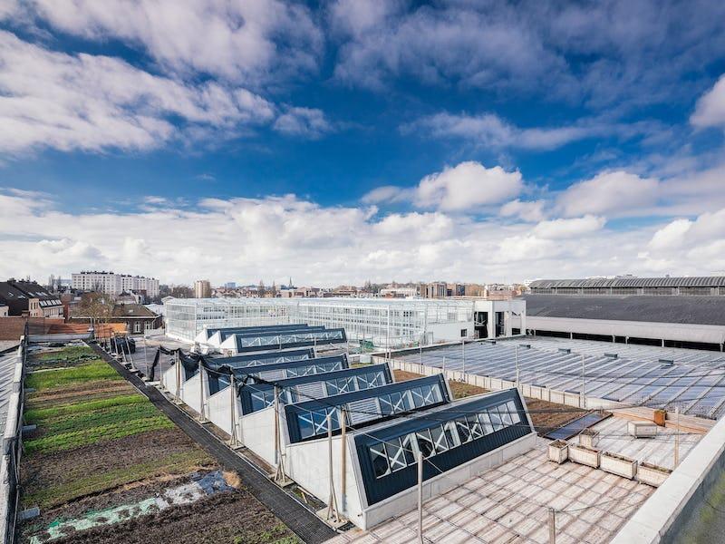 Visite de la 'Ferme urbaine Abattoir', la plus grande ferme suspendue d'Europe !