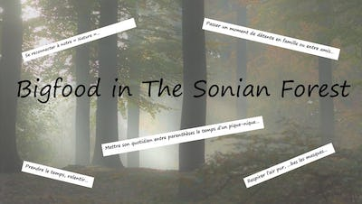 Bigfood in the Sonian Forest