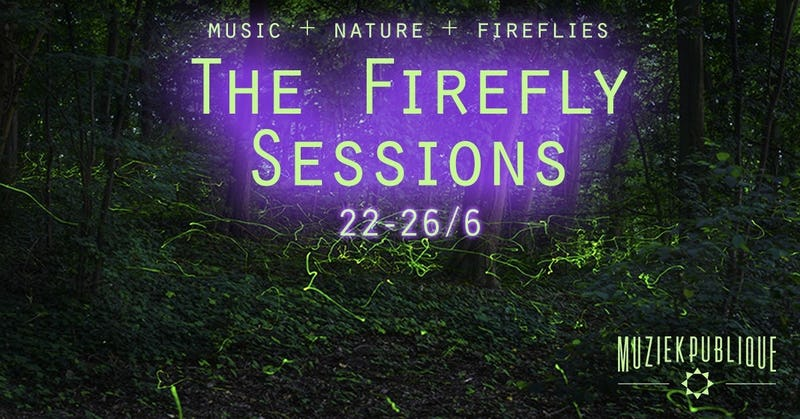 The Firefly Sessions