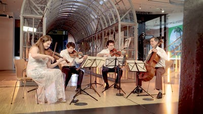 Projection de concerts en plein air - Musique au musée