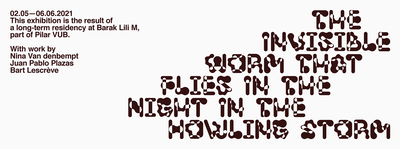 The Invisible Worm that Flies in the Night in the Howling Storm