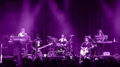 The Revolution 'Prince's former band'