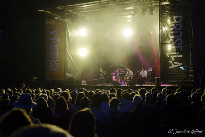 Brosella Festival