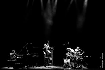 Avishai Cohen Trio feat. Mark Guiliana & Elchin Shirinov