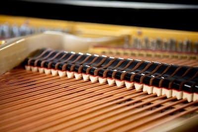 Concours Reine Elisabeth piano - Concert des Lauréats