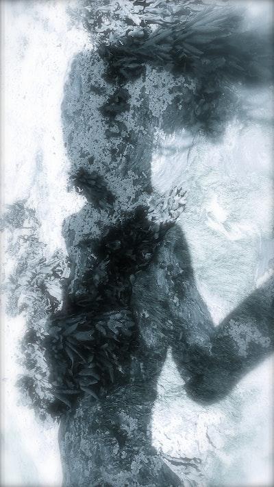 Vénus Impudiques