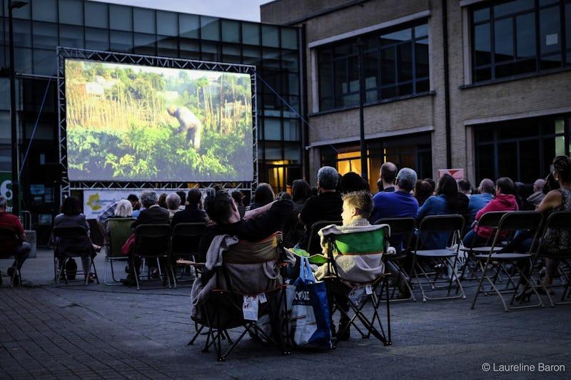 BRUXELLES FAIT SON CINEMA (20 séances gratuites en plein air)