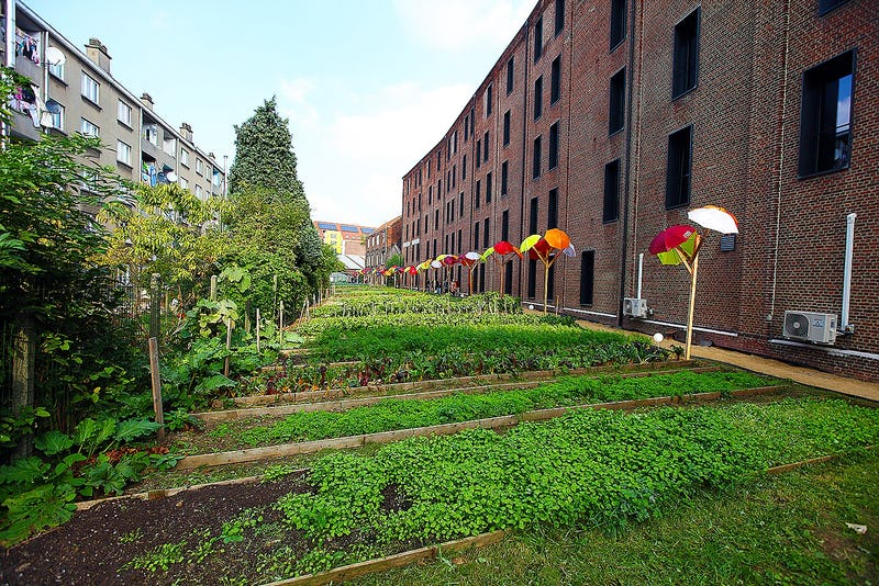 Un jardin magique à Molenbeek