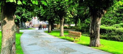 PARK TOUR : Visite gratuite Parc Georges Henri