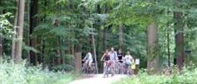 La forêt de Soignes : toute une histoire!