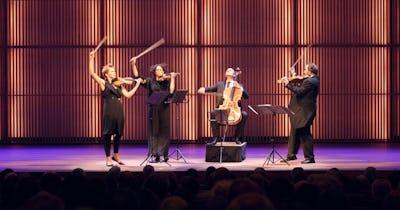 Artemis - The Neverending Quartet (Hester Overmans)