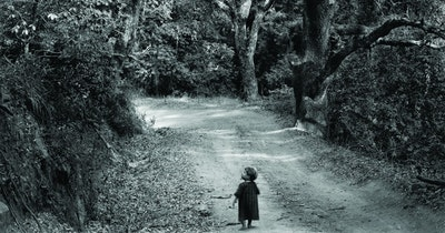 Child on a Forest Road (pour La Mémoire des arbres), ©Wynn Bullock, Child on Forest Road, 1958 © 1958/2019 Bullock Family Photography LLC.  All rights reserved. ©Wynn Bullock, Child on Forest Road, 1958 © 1958/2019 Bullock Family Photography LLC.  All rights reserved.